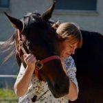 Animal Homeopath, HGE® Facilitator