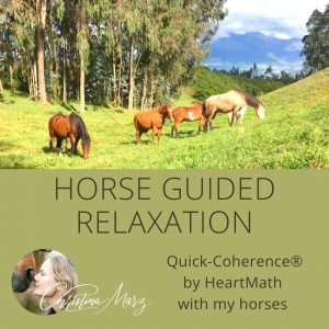 Relax with the Herd